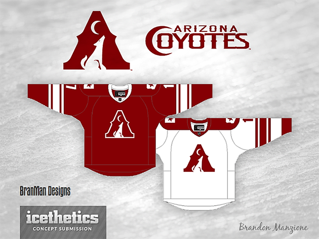Arizona Coyotes new official name for Phoenix, starting in 2014…
