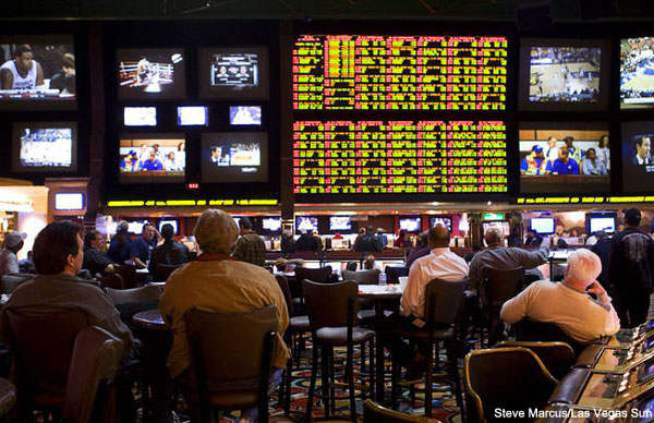 nevada sports book nfl football vegas odds