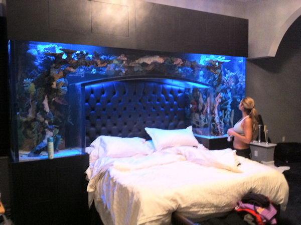 Chad Ochocinco sleeps underneath a whole bunch of fish